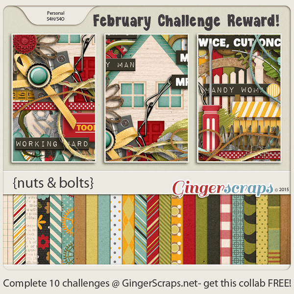 Feb_2015_Challenge Reward
