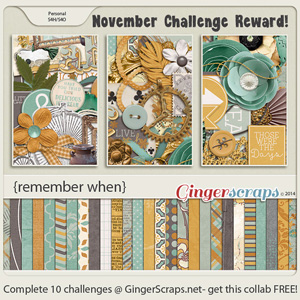 Nov_Challenge Reward