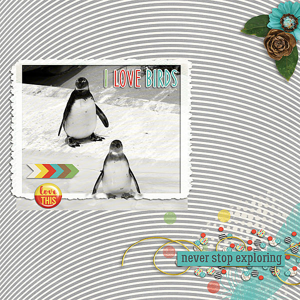 Created by JustTrace. I love the pic. Penguins are just adorable. I love the use of the monotone paper and the framing of the pic.