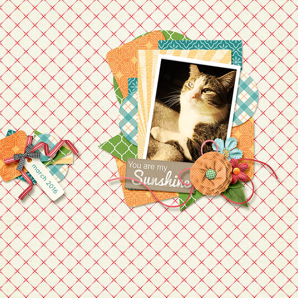 Created by weaselwatchr. I love the kitty, and the layering behind the photo!