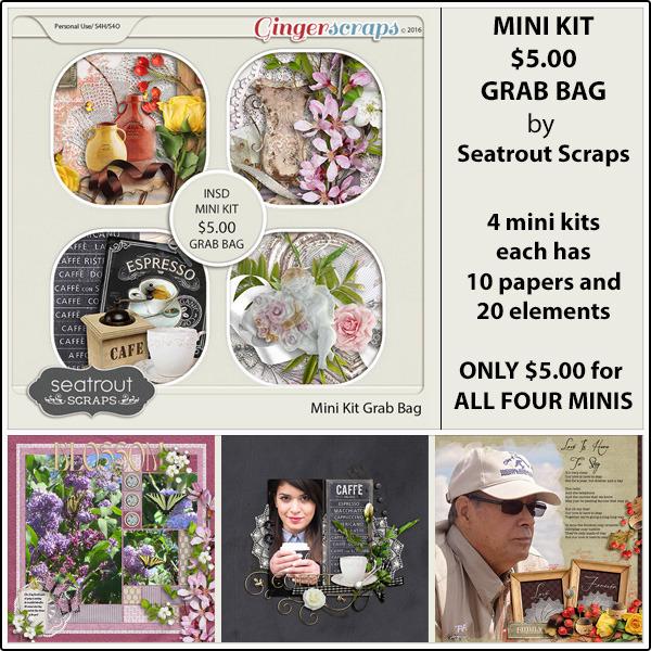 https://store.gingerscraps.net/Mini-Kit-5-iNSD-Grab-Bag.html